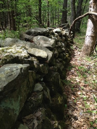 More of the mysterious large wall in the woods.