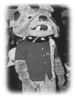 Me, in a bulldog outfit. Pretty sexy, huh?